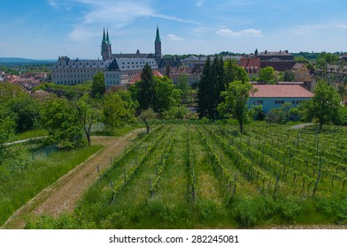 View over vineyard to St James' Church, Bamberg, Upper Franconia, Germany.