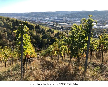 view over the vineyards to river Neckar, the Mercedes plant and other industrial areas around Stuttgart
