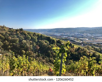 view over the vineyards to river Neckar and the industrial areas around Stuttgart