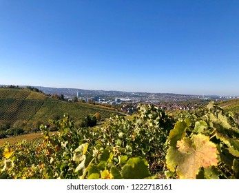 View over vineyards to the surrounding industrial area with museums and soccer stadium in Stuttgart Bad Cannstatt, Germany
