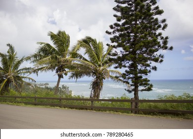 View of Pacific Ocean with Tropical Trees and Dirt Road
