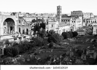 View from Palatine Hill in Rome in black and white with the Colosseo in the distance