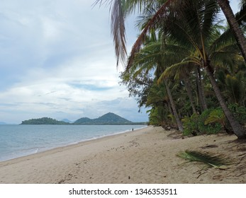 View of Palm Cove Beach fringed by palm trees with views out over the Great Barrier Reef to Double Island and the surrounding mountains in Cairns, Queensland, Australia