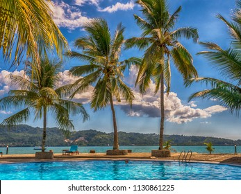 View with palm trees around luxury swimming pool during on the tropical island. Ambon Island. Indonesia
