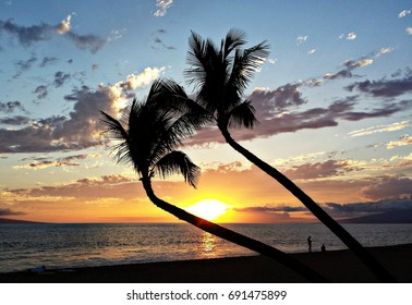 View of palm trees at beach during sunset