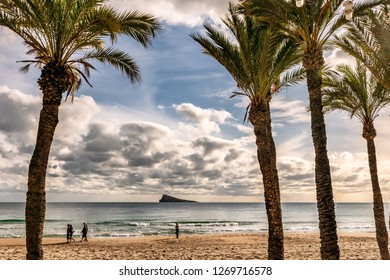 View of palm trees on the Mediterranean beach of Benidorm and Benidorm island in the distance.