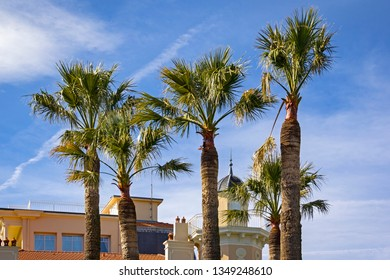 View to a palm trees, at the promenade at the sea in Ste Maxime, a coastal village at the French Riviera.