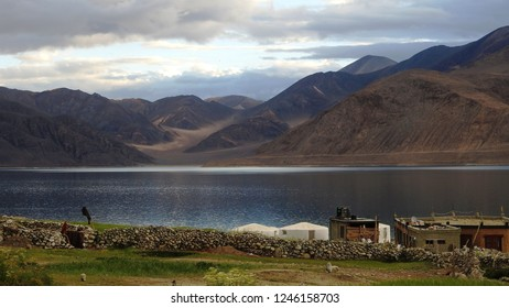 view of Pangong Lake from my tent at Mann