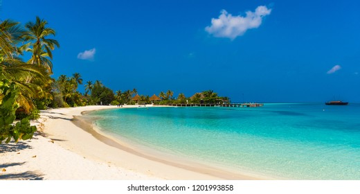View of the paradise sandy beach, Maldives. Copy space for text