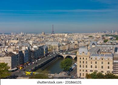 View of Paris, Petit Pont, Pont Saint-Michel and Tour Eiffel from Notre Dame cathedral