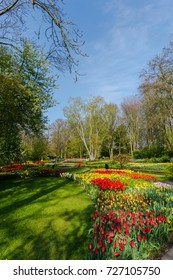 View in the park at the springtime