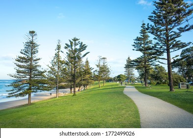 View of the park at Torquay Front Beach, a popular tourist attractions along the Great Ocean Road. Beautiful waterfront nature reserve with pedestrian walkway and trees. Torquay VIC Australia.