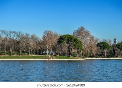 View of a part of the Lake ofla Casa de Campo with trees behind in Madrid. Spain