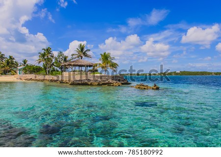 View of the peaceful Caribbean sea with crystal clear water, palm trees, white clouds and blue sky on a beautiful sunny day. Tilloo Cay, Marsh Harbour, Abaco, The Bahamas.