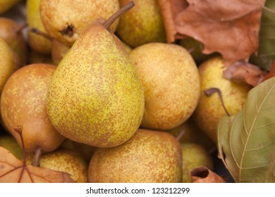 view of pears with autumn leaves