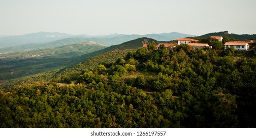View at picturesque roofs of Signagi and Alazani valley, aerial shot, sunny summer day