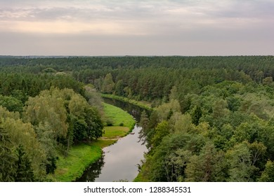 View to the pinewood treetops and winding Sventoji River from the watchtower of The Treetop Walking Path in Anyksciai, Lithuania.