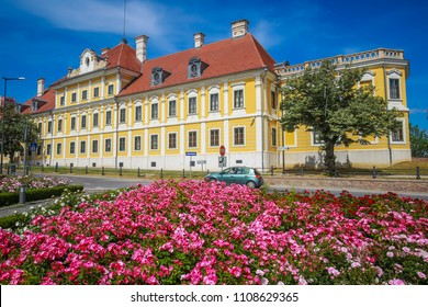 A view of the pink flowers with the City museum located in the Eltz castle in Vukovar, Croatia.