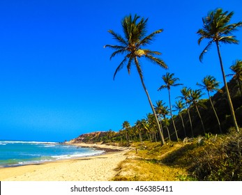 View at the Pipa beach in Brazil