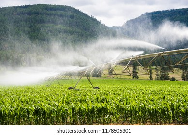 View of a Pivot Irrigation System Watering a Corn Field. Mountains are in Background.