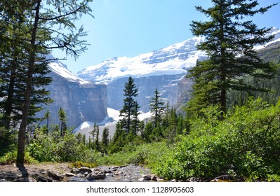 View from the Plain of Six Glaciers Trail Tea House near Lake Louise.