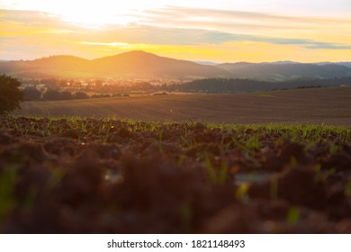 view of a plowed fertile field during sunset