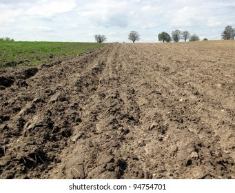 view of plowed land