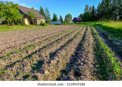 View of the plowed land. Furrows from the plow. Agriculture Preparing for planting. latvia