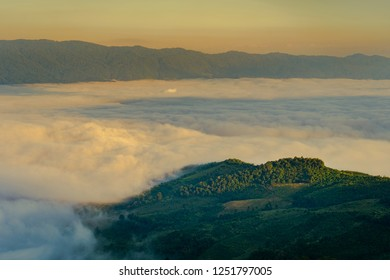 View point Mist on Phu Chi Fa in chiang rai province