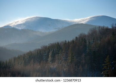 View to Polonina Carynska (Carynska Clearing), Bieszczady Mountains, Bieszczady National Park, Carpathians Mountains, Poland