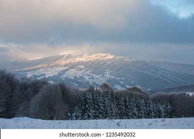 View to Polonina Wetlinska (Wetlinska Clearing), Bieszczady Mountains, Bieszczady National Park, Carpathians Mountains, Poland