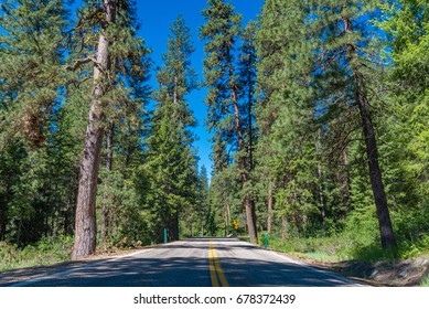 A view of the Ponderosa Pines Scenic Byway, Idaho