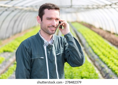 View of a Portrait of an attractive farmer in a greenhouse using mobile