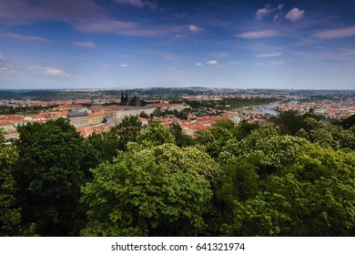 view to prague castle, St. Vitus Cathedral and Vltava river in Prague with green trees in foreground from Petrinska rozhledna tower in sping Czech republic