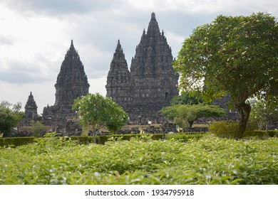 View of Prambanan temple with green plants in the Foreground