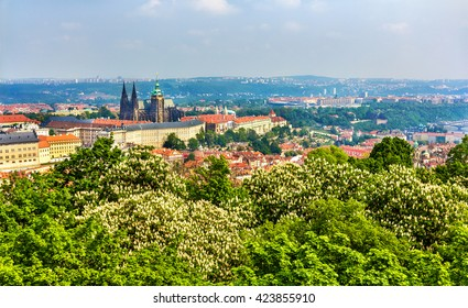 View of Prazsky hrad castle - Czech republic