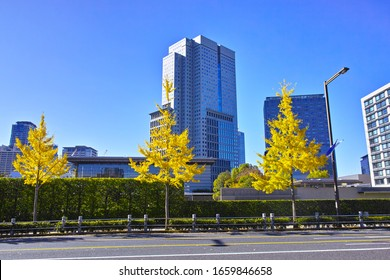 A view of the Prime Minister's official residence seen from Nagatacho Bypass in Chiyoda-ku, Tokyo in autumn
