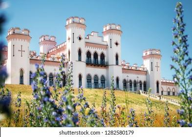 View Puslowski palace through lavandula flowers in Kosava in summertime, Belarus