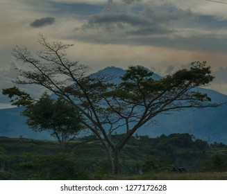 The View of Pusuk Buhit Mountain on Samosir Island. This mountain was sacred because the descent of the first batak man.