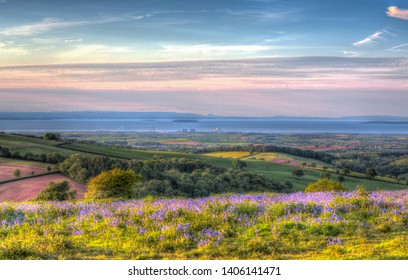 View from Quantock Hills Somerset England UK towards Hinkley Point Nuclear Power Station and the Bristol Channel on a summer evening with bluebell flowers in  colourful HDR like a painting