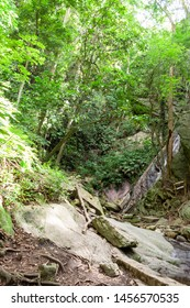 View of Quintero's Ravine or Quebrada Quintero from the iconic mountain of Caracas,El Avila or Waraira Repano.One of the most well-known water sources of this mountain, where people have fun.