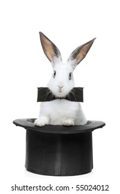 A view of a rabbit with bow tie in a hat isolated on white background