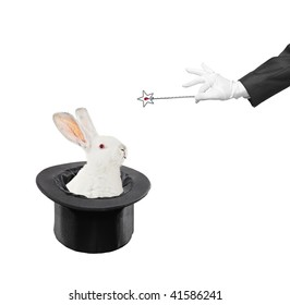 A view of a rabbit in a hat isolated on white background