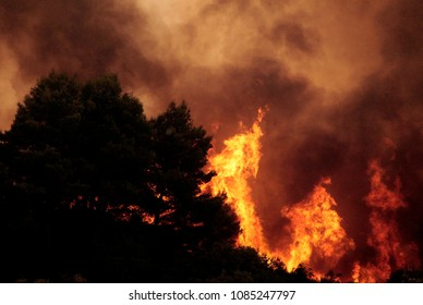 View of a raging fire in the forest of  Ouranoupoli, Greece on Aug. 9, 2012