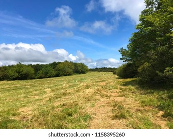 View of recently mowed meadow on top of Hooper Bald off Cherohala Skyway in North Carolina