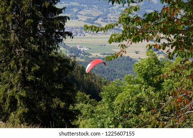 View of a red paragliderthrough tree branchs flying over trees off Col de la Forclaz Annecy  France