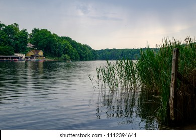View from the reeds on the shores of Lake Schlachtensee in Berlin-Zehlendorf, Germany, on a cloudy summer day.