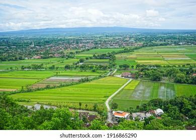 view of rice fields from a height at spot Riyadi, Prambanan