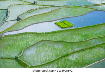 View of rice terraces fields in Banaue, Philippines.