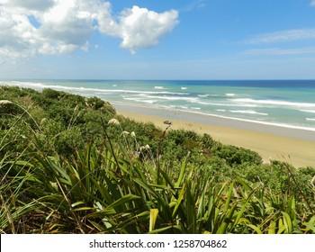 View of Ripiro Beach and the Tasman Sea at Baylys Beach, New Zealand
